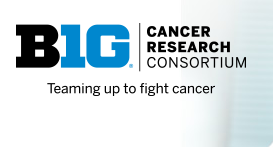 BIG Cancer Research Consortium- Teaming up to fight cancer.