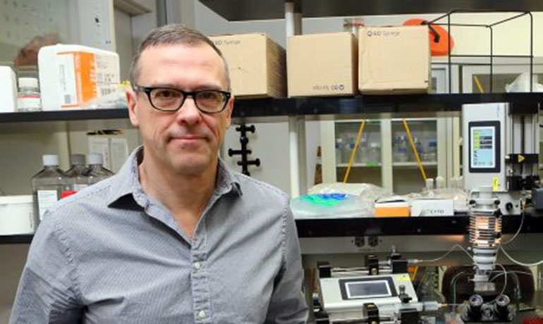 Frolov finds other function for retinoblastoma protein