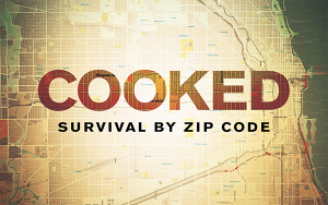 Cooked Survival By Zip Code