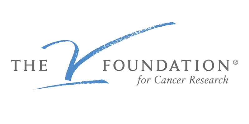V Foundation funding opportunities