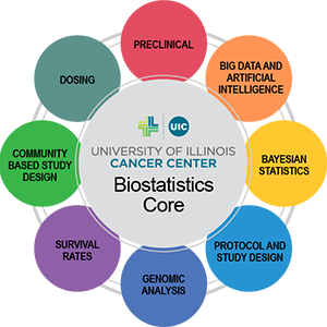 infographic showing the tools used by the Biostatistics Core at the University of Illinois Cancer Center