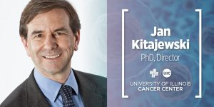 Kitajewski named new director of University of Illinois Cancer Center