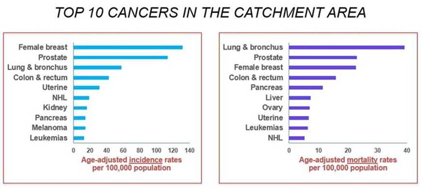 Top 10 cancers in the catchment area